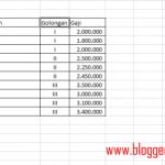 Cara Filter Data di Excel 2007 [Tutorial Pemula]