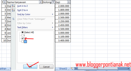 Cara Filter Data di Excel