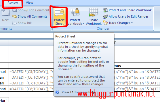 Cara Unprotect Sheet Excel 2007