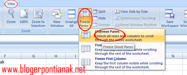 Cara Menggunakan Perintah Freeze Panes Excel 2007